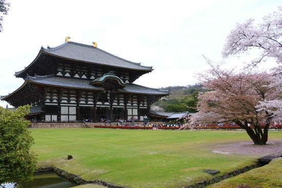 Paket Kansai Tour Wisata Ke Jepang Osaka Kyoto Nara Private Tour 3 Hari 2 Malam